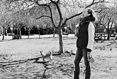 AR2-070-33A (David Swift Photography Thanks for 22 million view) Tags: davidswiftphotography philadelphia northernliberties candidportrait dogwalker dogs parks trees 35mm film ilfordxp2 nikonfm2