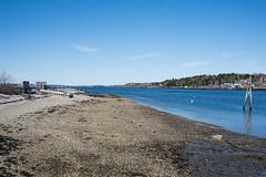 bailey island maine-2 (heather morris photography) Tags: maine coastalmaine newengland outmywindow ocean atlantic water coastline rocks beach spring