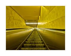 Speed (dolorix) Tags: dolorix köln cologne ubahn underground treppe stairs architektur architecture yellow gelb