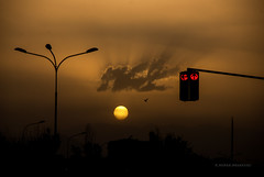 Hmm... (Nenad Bogoevski Photography) Tags: city light sunset shadow sun bird silhouette clouds golden trafficlight flying traffic sundown pigeon spots macedonia hour rays sunrays novo beams sunbeams aerodrom sunspots skopje lisice makedonia