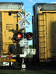 Waiting for the Train (ms smartipants) Tags: railroad train michigan signal railroadcrossing trenton downriver