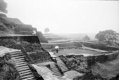 Sigiriya Sri Lanka (Alexandre Moreau/Hydroquinone) Tags: film rock analog bessa d76 srilanka fortress remi sigiriya r2m epson700 alexandremoreau