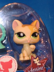 Petshop 832 (Girly Toys) Tags: petshop pets pet animaux figurine figurines chat cat dog chien bird oiseau tigre tiger ours bear panda cheval horse hasbro collection 832 missliliedolly miss lilie dolly aurelmistinguette girly toys collectible girlytoys