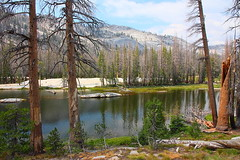 IMG_0793 Vogelsang to Merced Lake via Fletcher Creek (ThorsHammer94539) Tags: yosemitenationalpark