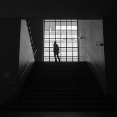 Escape to the first floor, MUSEUM FR GESTALTUNG ZRICH (Georgie Pauwels) Tags: street city people urban blackandwhite bw streetart man window monochrome lines museum stairs dark geometry candid olympus zrich georgiepauwels