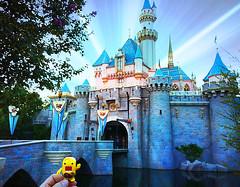 Let the magic begin!! (DollyBeMine) Tags: california cute travelling castle fun toy disneyland famous sunny disney resort plastic domo figure amusementpark orangecounty anaheim custom domokun themepark sleepingbeauty qee trekker