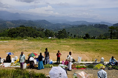 ELLA to KANDY (hillside train ride) (ShaZ Ni) Tags: green nature train landscape asia view ride ella srilanka hillside kandy
