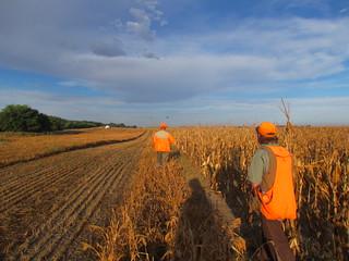South Dakota Pheasant Hunt - Pierre 14