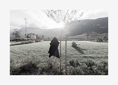 04:Forget (Khuzul (Alessandro Petri)) Tags: autumn portrait girl landscape solitude loneliness trento void emptiness trentino khuzul voigtlnder12mmf56ultrawideheliar sonynex6 konikamhexanon35mmf2