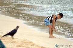 Cute Conversation (nbavan7) Tags: ocean life morning boy black cute bird love beach nature water beautiful beauty look kids fly kid sand alone peace play sad walk awesome wave learning conversation crow bavan nbavan7