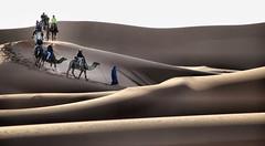 Un deserto di onde che cercano spiagge (Sante sea) Tags: sahara morocco maroc marocco deserto tuareg cammelli dromedari