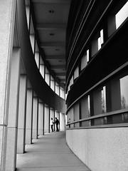 1 (JDO198) Tags: blackandwhite architecture buildings blackwhite highcontrast lawrencekansas panason