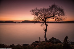 Loch Duntelchaig. (Gordie Broon.) Tags: longexposure winter sunset nature water fence landscape geotagged scotland scenery alba scenic escocia hills highland inverness lonetree schottland ecosse invernessshire scozia scottishhighlands 2013 canon24105l dunlichity lochduntelchaig gordiebroonphotography canon5dmklll