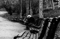 Busy retirement (Milos Eskert) Tags: belgrade nikon18105mmf3556 nikond5100