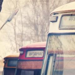 Три скота ж #arzamas #bus #liaz #liaz677m #skotovoz