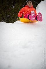 A03_2702.jpg (Nao Okawa) Tags: winter snow cold kids fun newjersey backyard play hill slide sledding pax snowing shovel sled edgewater