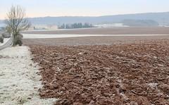 (:Linda:) Tags: road germany village hoarfrost thuringia soil veilsdorf rauhreif werravalley