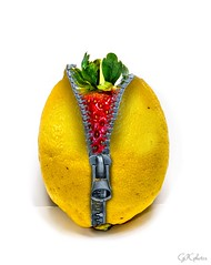 Something a little different! (GPC- photos) Tags: food metal photoshop lemon strawberry jacket zipper inside zip outoftheordinary fz150 beginnersdailychallengewinner fruitzip lemonzip