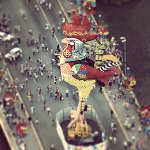 Galo eu te amo... sou apaixonado por você. .. #galodamadrugada o melhor e maior bloco carnavalesco do mundo! #Recife #pernambuco #brazil