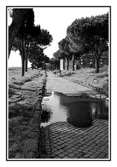 Appia - www.polliniphotolab.com (Pollini Photo Laboratory) Tags: leica 28mm m8 elmarit fotografianaturalistica naturalisticphotos marcopollini polliniphotolabcom