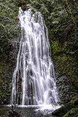 Madison Creek Falls (stephencurtin) Tags: color creek forest landscape waterfall washington state falls madison national olympic photogaph