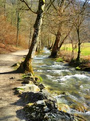 Der Weg zum Wasserfall (almresi1) Tags: schwäbischealb flus river bach felsen rocks stones wood trees wald forest way weg