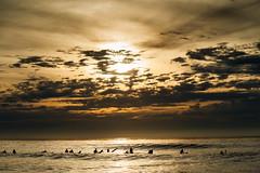 20170108 -SURF_8 (Laurent_Imagery) Tags: surf surfer surfing surfline surfeur surfers surfergirl horizon orange dark darkness water sea ocean pacific oceanpacific pacificocean coast coastal coastline weather sun sunset silhouette lifestyle culture sport action windansea sandiego draper california usa west nikon d3 lightroom editorial magazine shine shining yellow group waitiing waiting swell wave vagues