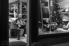 Þorláksmessa (Thorlaksmesse, letzter Tag vor dem Weihnachtsfest) in Reykjavik (Agentur snapshot-photography) Tags: abend abenddämmerung abendlich abendlicht abends advent adventszeit business christmasseason dämmerung dämmerungsaufnahme dawn dusk evening iceland island markt marktbude märkte marktstand personen reykjavik tourism tourismus twilight vorweihnachtszeit weihnachten weihnachtseinkauf weihnachtsgeschäft weihnachtsmarkt weihnachtszeit wirtschaft xmas isl