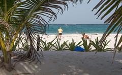 Tulum Main beach-2