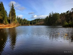 Lochan a' Ghleannain, Loch Ard Forest. March 2017. (Jen_wilsonphotography) Tags: lochanaghleannain iphone uk spring walking nature trees clouds sky forest lochan scotland aberfoyle lochardforest lochard trossachs