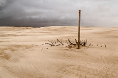 One post (RWYoung Images) Tags: rwyoung canon 5d3 southaustralia post sand dune coast beach storm landscape