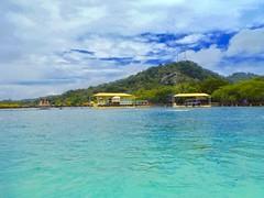 Version 2 Roatan Honduras Anthony's Key Resort (bermudafan8) Tags: 2017 spring break bermudafan8 roatan honduras anthonyskeyresort dolphin