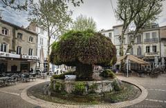 Salon de Provence (Rémi Avignon) Tags: salondeprovence 13