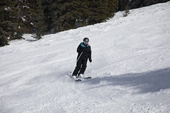 2017-00463 (kjhbirdman) Tags: activities bower businesspeople colorado people places snowskiing steamboatsprings unitedstates vascularsurgerycolleagues