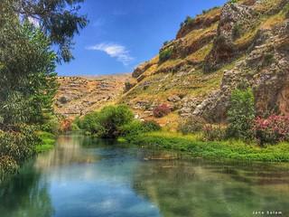 #landscape #spring #lebanon #photography #landscape_photography #green #reflection #nature_photography #photography #photo