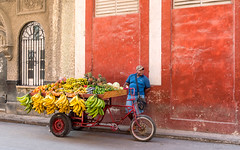 Fruit vendor, Old Havana (I saw_that) Tags: cool cool2 uncool uncool2 uncool3 uncool4 uncool5 uncool6 uncool7 iceboxuncool
