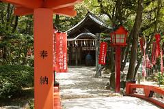 (noidcanuse2011) Tags: gf2 m43 晴 日本 福岡 博多 住吉神社