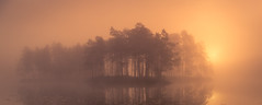 Moody (andreassofus) Tags: mood moody fog foggy mist misty mistymorning water reflections sun sunlight sunrise trees islands morning outdoor canon manfrotto sweden lake nature landscape