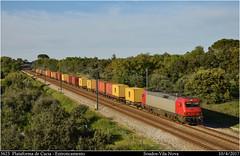 MEDWAY (Trenes2000) Tags: tren cp carga medway teco msc contenedores mercancias mercante electrica 5600 5623 aveiro cacia entroncamento siemens