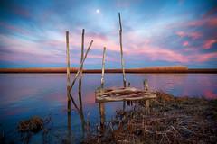 Spring Moon (DJawZ) Tags: moon sunset bay nj fujifilm xt2 blue red water parkertown docks pilings newjersey marsh