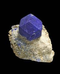 Lazurite (Ron Wolf) Tags: earthscience geology lazurite mineralogy crystal isometric mineral nature tectosilicate badakhshanprovince afghanistan explore