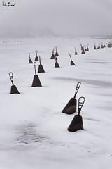 boe ghiacciate, Helsinki (Fabio Cevrero) Tags: helsinki helsingfors boe ice seaside sea mare ghiacciato winter suomi finland finlandia north europe europa paesaggio landscape nikon d3200 fog nebbia