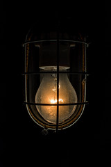 the cellar   l   2017 (weddelbrooklyn) Tags: lampe licht glas keller baulampe hell dunkel lamp bulb light bulplight glass cellar dark nikon d5200
