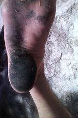 Spirulina Feet (SmellyFeetBoy) Tags: spirulina feet foot dirty blue green algae filthy toes soles barefoot bare barefeet white boy male man gay homo homosexual solo
