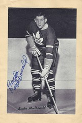 1934-43 NHL Beehive Hockey Photo / Group I - BUCKO McDONALD (Defence) (b. 31 Oct 1911 - d. 19 Jul 1991 at age 79) - Autographed Hockey Card (Toronto Maple Leafs) (#334 / Last name misspelled MacDonald) (Baseball Autographs Football Coins) Tags: hockey beehive 1934 1967 19341967 groupi groupii groupiii woodgrain torontomapleleafs bostonbruins newyorkrangers montrealcanadiens chicagoblackhawks detroitredwings montrealmaroons newyorkamericans card photos hockeycards brooklynamericans nationalhockeyleague nhl buckomcdonald buckomacdonald defence