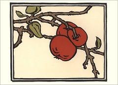 Japanese persimmon (Japanese Flower and Bird Art) Tags: flower persimmon diospyros kaki ebenaceae yoshiko yamamoto modern woodblock print japan japanese art readercollection