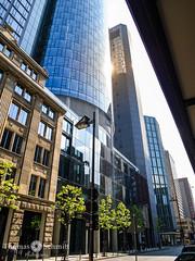 Maintower (Seppelche) Tags: maintower frankfurtm gebäude architektur sonne gegenlicht stadt wolkenkratzer mainhattan