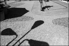 (artigiano) Tags: wien vienna street golf schwarzweiss blackwhite fujixpro2 vsco agfascala200 shadow kontrast fujinonxf23mmf2rwr
