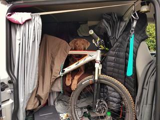 i protect her Bike ....