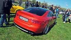 IMG_1425 (PhotoByBolo) Tags: car cars tuning stance vag audi seat vw volkswagen meeting carmeeting nowy staw wheels dope vr6 lowandslow low slow airride air ride criusing cruse 10th edition clasic classy moto petrol bmw a4 a6 golf passat interior engine a3 family polish works